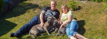 Wir mit Hunden im Garten